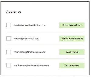 mailchimp audience tools