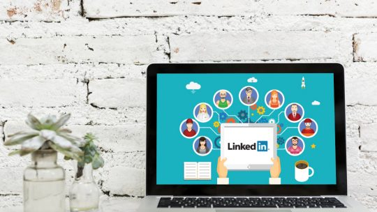 Types of users on LinkedIn