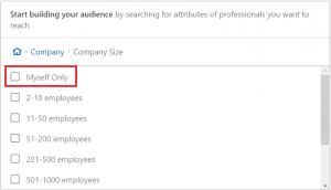 linkedin ads company size
