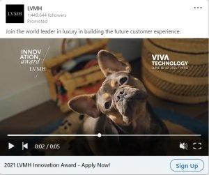 linkedin ad examples - LVMH