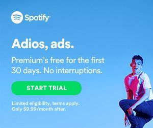 google display network examples - spotify